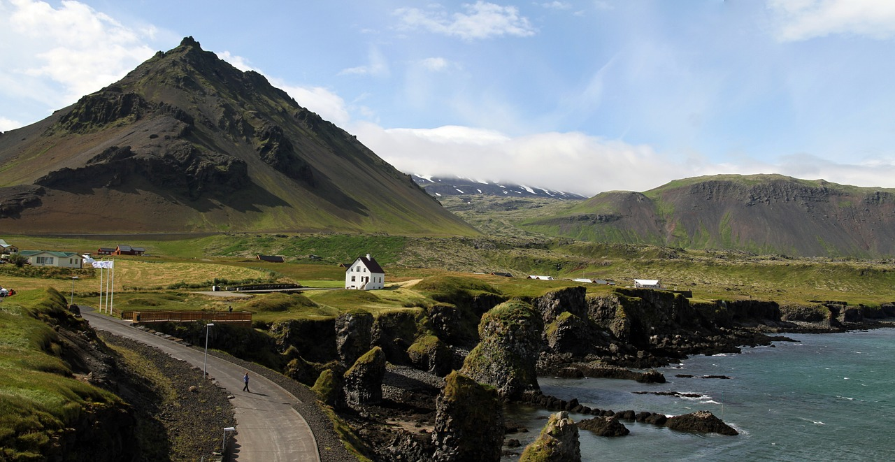Road in Icelandic counryside